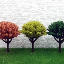포레스 건축모형재료 칼라나무 8cm 16종모음