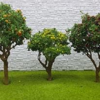 포레스 디오라마 과일나무모형 3종 / 건축모형재료
