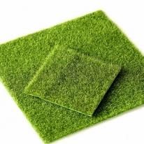 포레스 테라리움 재료 잔디바닥 2종 골라담기