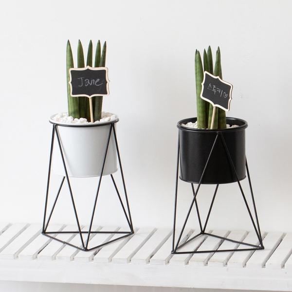 [풀밭] 철재화분 + 스투키 세트 공기정화식물 미세먼지제거
