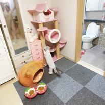 베란다만들기 캣타워 고양이 매트 강아지 미끄럼 방지 슬개골 보호 타일 카페트(50x50cm)
