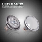 LED PAR30 모음