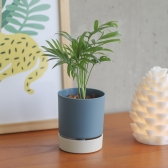 메이크정글 RETRO POT 공기정화식물 원형 컬러화분