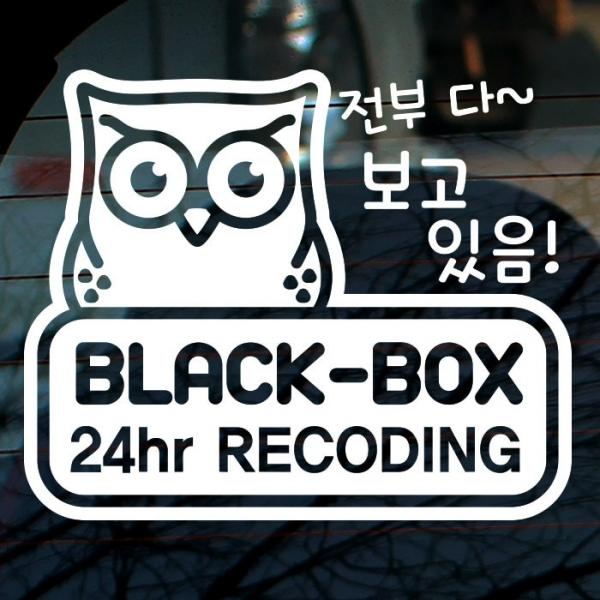 부엉이 블랙박스 녹화중 01