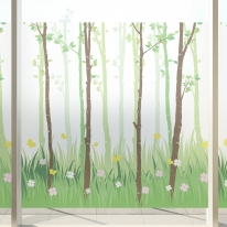 고급칼라안개시트_자작나무 숲의 봄